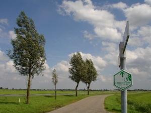 Friesland 067