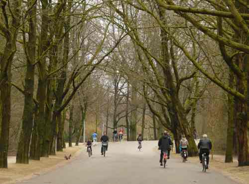 Riding through Amsterdam's Vondelpark is pleasant in almost any season, however...