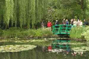Bridge in the water garden.