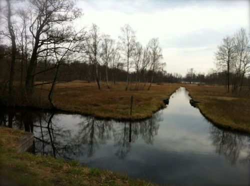 Amstelveen is not known for its nature, but the area around the Amstelveense Poel has its charm.