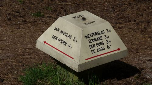 The 'toadstools' ensure you can't get lost on Texel, though we managed it anyway.