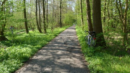 ...then out through the the Amsterdamse Bos (Forest).