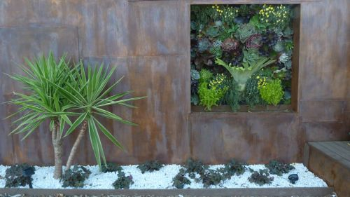 ...and the ideas for horticulture in a tiny courtyard garden.