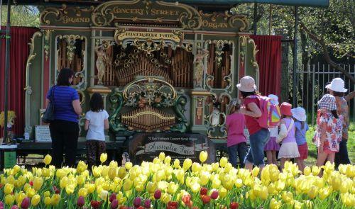An Australian street organ, with a Dutch manufacturer.