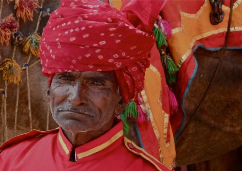 This camel man is in Jaipur, and his face is his fortune. If I had his job I'd try just to put up with it too.