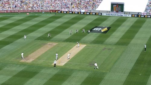 Mitchell Johnson strikes a little terror into an English batsman's heart.