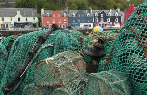 We pause at Tobermory, the largest town on Mull, to take on some local seafood.