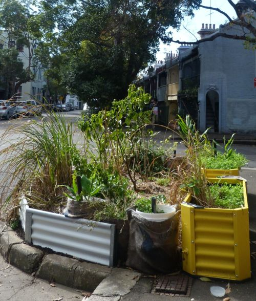 Community street gardens. Nature strips you can eat.