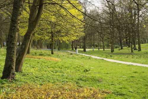 A 4km circuit of the  Rembrandtpark is a breath of fresh air.