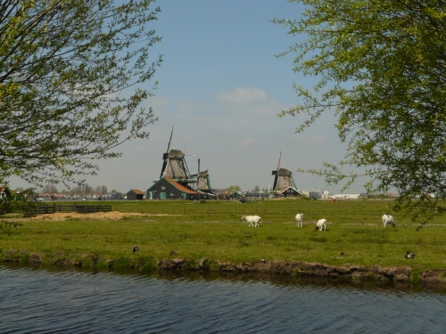 Windmills of the Zaan.
