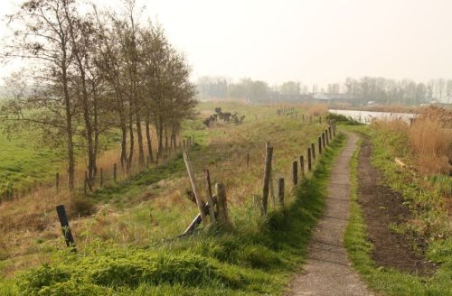 I like this shot because it's of an unremarkable path near the Amstel River, just out of Amstelveen.