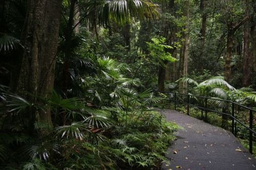 At least near the Visitors' Centre, the trail is perfect, even suitable for wheelchairs.