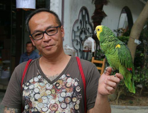 The parrots look happy enough however.