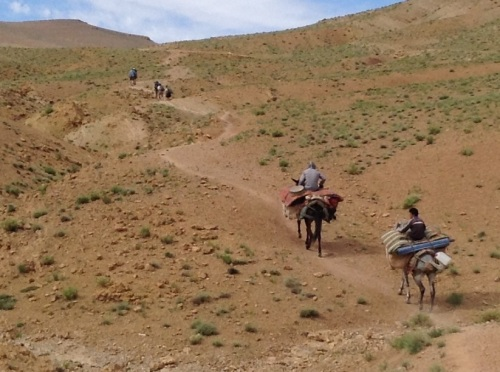 The mules are following my hiking companions and I'm following the mules. One of them has my backpack, with keys, passport and mobile phone. Time to get a move on!