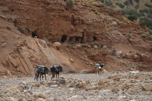 Our mules passing the caves in which goat herders live. 'Mediaeval', says someone. 'Biblical' says someone else, and that seems more accurate.