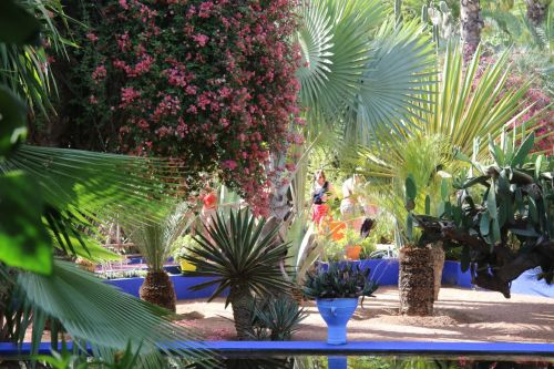 'Majorelle blue' they call it, though it looks like ultramarine straight out of the pot to me.