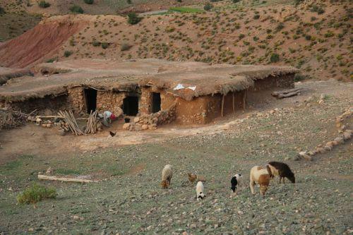 By a Berber farmhouse.
