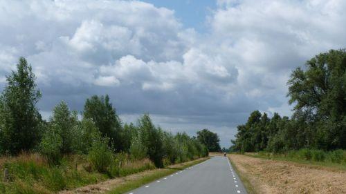 Cycling Biesbosch