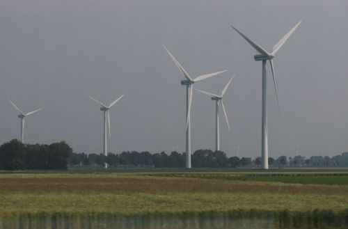 A Dutch wind farm. 'Too noisy,' says Mr Abbott. He must have extremely acute hearing.