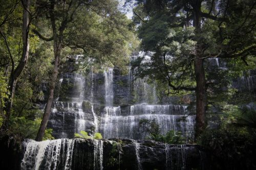 We marvelled at Russell Falls in Mt Field National Park.